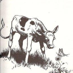 Oksen Ferdinand
